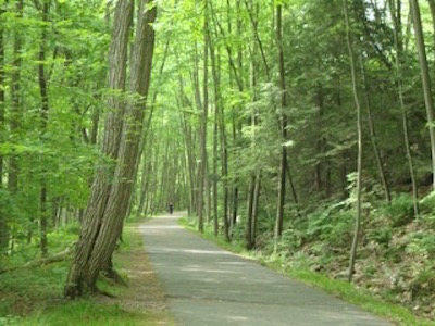 http://mwvrecpath.org/uploads/images/Home_Columns_400x300/Path with trees 400.jpg